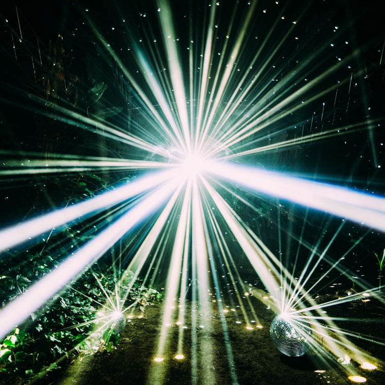 Image result for フレデリック「LIGHT